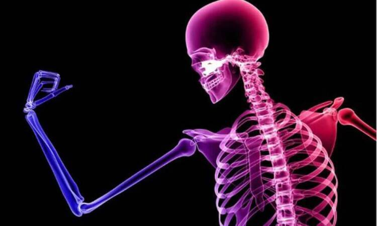 Maintaining bone health is a vital step in the health of the whole body