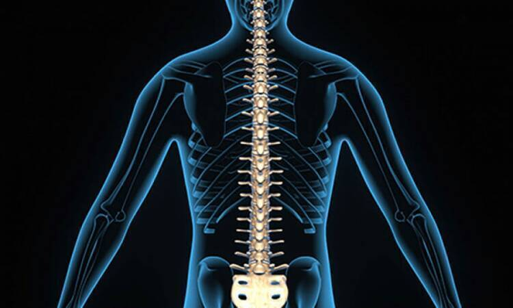Facts about Spinal Surgery: When Is It Necessary?